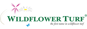 Wildflower Turf Home Page